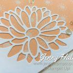 Online Class by Jenny Hall www.jennyhalldesign.com
