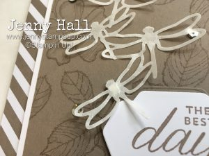 Birthday Blossoms & Detailed Dragonfly Thinlits by Jenny Hall at www.jennyhalldesign.com