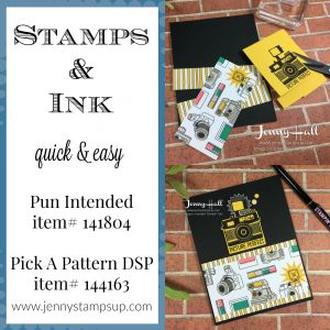 Pun Intended & Pick A Pattern DSP by Jenny Hall at www.jennyhalldesign.com