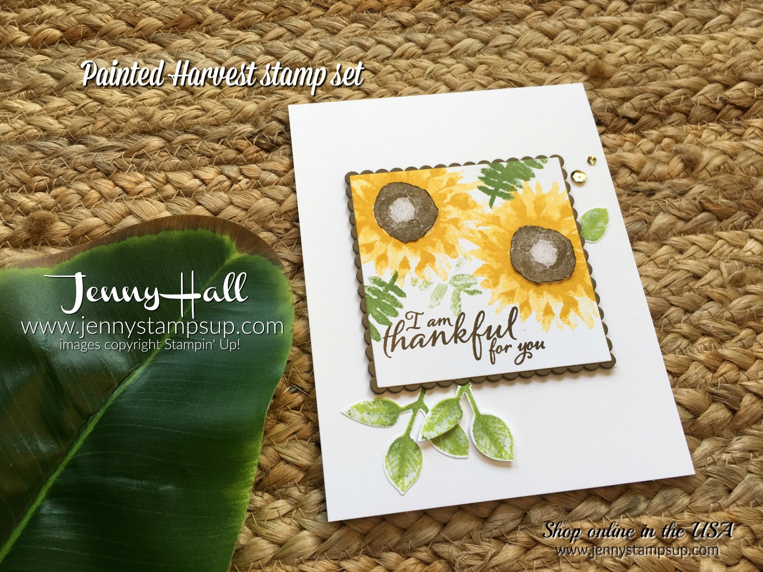 Painted Harvest Bundle card with video by Jenny Hall at www.jennyhalldesign.com for cardmaking, free video tutorials, papercraft gift giving, scrapbooking and more