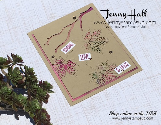 Inlay die cuts over Glossy paper with Stampin Up products with Jenny Hall at www.jennyhalldesign.com