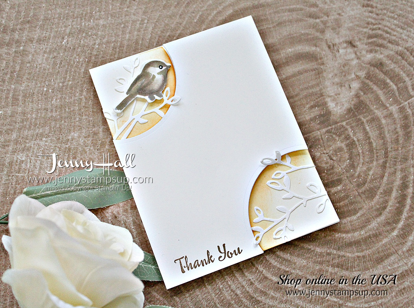 Morning Sun Petal Palette card by Jenny Hall at www.jennyhalldesign.com for #stampinup #cardmaking #cascards #cleanandsimplecards #jennystampsup #jennyhallstampinup #jennyhalldesign #cardmakingchallenge #cardmakingtechnique #videotutorial #cardmakingtechnique #scrapbooking and more!