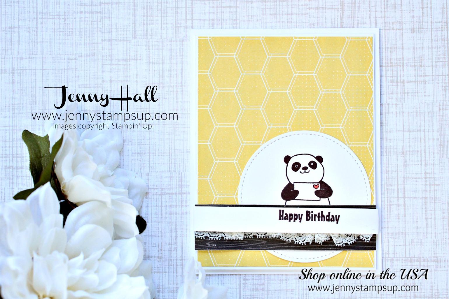 Party Pandas card by Jenny Hall at www.jennyhalldesign.com for #cardmaking #cardmaker #kidfriendlycraft #stitchedshapesframelits #honeybear #bubblesandfizzdsp #wwys #whatwillyoustamp #stampinup #cardmakingvideo #jennyhalldesign #jennystampsup #jennyhallstampinup #papercraft #artsandcrafts #diy