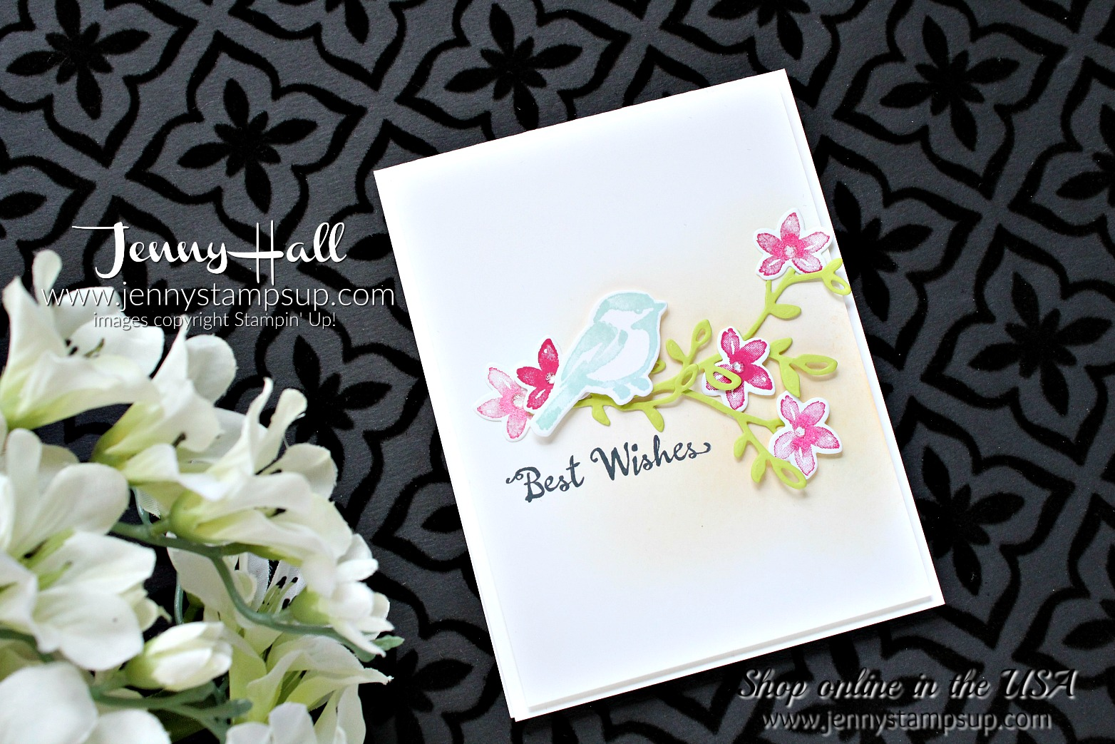Spring color card with Petal Palette for Color Throwdown by Jenny Hall at www.jennyhalldesign.com for #cardmaking #stamping #handstamped #petalpalette #fruitycolors #cascards #cleanandsimplecards #stampinup #jennyhalldesign #jennystampsup #jennyhallstampinup #cardmakingvideos #colorthrowdown #softcoloring #inkblending #ombre #papercraft