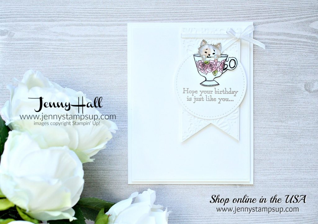 Kitten in a teacup card created by Jenny Hall at www.jennyhalldesign.com for #cardmaking #stamping #stampinup #coloring #cascards #cleanandsimplecards #justaddcolordsp #prettykitty #jennyhalldesign #jennystampsup #jennyhall #youtuber #videotutorial #crafts #lifestyle