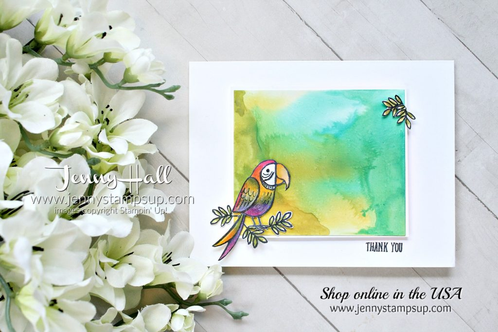 March Creating Kindness Design Team Blog Hop and Video Hop created by Jenny Hall at www.jennyhalldesign.com for #cardmaking #stamping #create #crafts #cardmakingtechnique #birdbanter #parrot #stampinblends #glossywhitepaper #glossywhite #fussycutting #stampinup #jennyhalldesign #jennyhall #jennystampsup #jennyhallstampinup #cascards #cleanandsimplecards #whitespace #youtuber #videotutorial #ckdt #creatingkindness #creatingkindnessbloghop #bloghop #videohop #crafts #kidfriendlycraft #lifestyle #watercolorpainting #thankyoucard