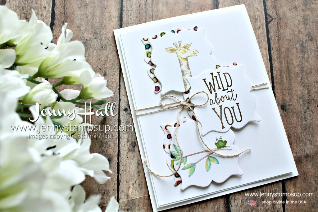 Animal Outing card created by Jenny Hall at www.jennyhalldesign.com for #cardmaking #stamping #crafts #stampinup #jennyhall #jennyhalldesigns #jennystampsup #animaloutingstampset #cascards #cleanandsimplecards #giraffe #rubberstamp #handmade #lifestyle #diy