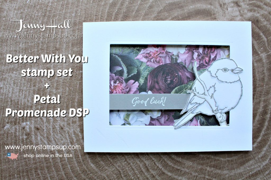 Coloring in your Comfort Zone Replay of FB Live video created by Jenny Hall at www.jennyhalldesign.com for #cardmaking #fblivereplay #birdstamp #partialdiecutframe #partialdiecut #petalpromenade #coloring #adultcoloring #cascard #cleanandsimplecard #stampinup #stamping #cardmaker #cardmaking #jennystampsup #stampinupdemo #youtuber #videotutorial #lifestyle #diy #crafts #hobbies