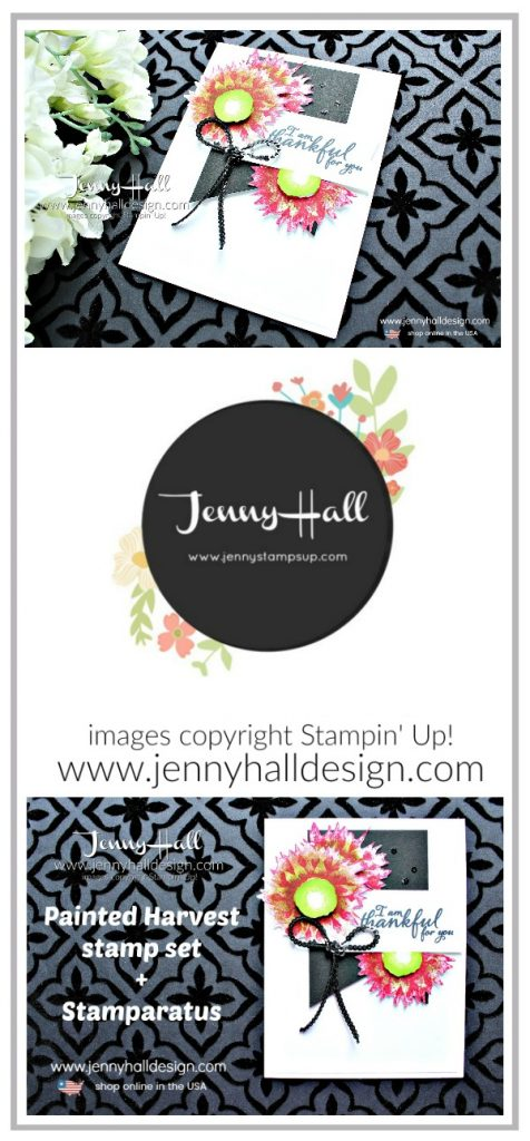 Multicolored Flowers with the Stamparatus card created by Jenny Hall at www.jennyhalldesign.com for #jennyhall #jennyhalldesign #jennystampsup #gerberdaisy #gerberadaisy #sunflower #youtuber #julypromotion #freestamppads #stamping #stampinup #cardmaker #cardmaking #videotutorial #papercraft