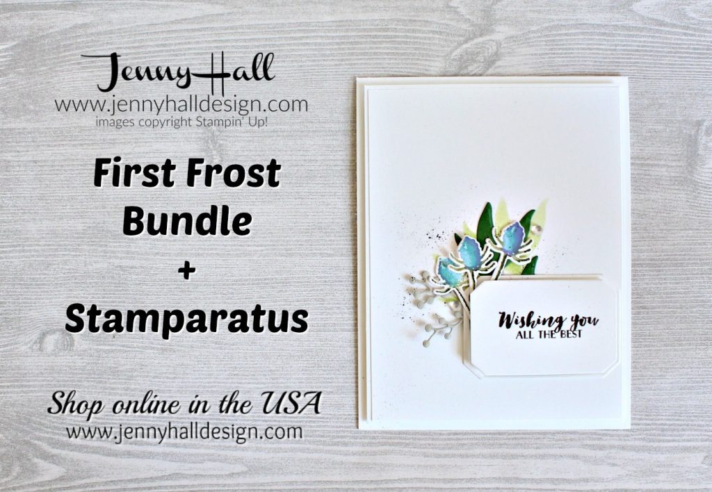 Color Layering with the Stamparatus card created by Jenny Hall at www.jennyhalldesign.com for #stamping #stampinup #cardmaking #cardmaker #hobbies #kidshobbies #papercrafts #diy #greetingcard #cards #rubberstamp #jennyhall #jennyhalldesign #jennystampsup #firstfrostbundle #firstfrost #frostedbouquetthinlits #cascard #cleanandsimplecards #coneflower #artsandcrafts #arts #2018holidaycatalog #stampinupcatalog #youtuber #videotutorial