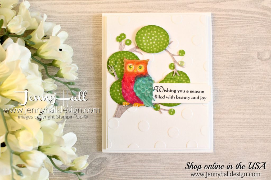 Still Night cartoon coloring card by www.jennyhalldesign.com for #stampinup #stamping #stillnightstamp #owlstamp #cartooncoloring #trollstheme #2018incolorsdsp #stampiblends #polkadotsbasictief #embossingfolder #wwyschallenges #jennyhall #jennyhalldesign #jennystampsup #papercraft #artsandcrafts #kidscrafts #craftingforkids #cartooncoloring #handmadecard #cardmaking