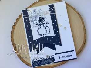 Christmas Magic in blue & white